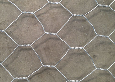 China Hot Dipped Galvanized Hexagonal Chicken Wire Mesh for Fish Trap supplier