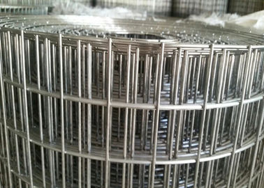 China 3 / 4 Inch Welded Wire Mesh Rolls , PVC Coated Welded Wire Cloth supplier