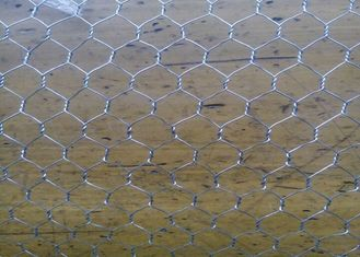 "China Galvanized Woven Chicken Mesh Wire Fencing 1 / 2""  For Ducks / Gooses supplier"