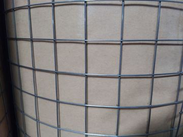 "China 1 "" GAW Mesh Electro Welded Wire Mesh Rolls For Protection With 0.7 mm Wire supplier"