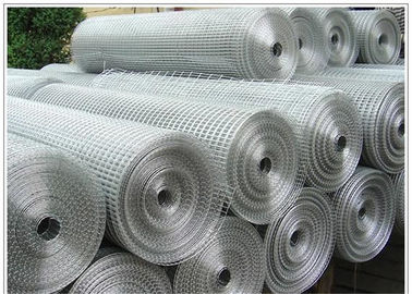 China Size 3/4'' Height 1.2m Welded Wire Mesh For Breeding Industry 0.6m -2m Width supplier