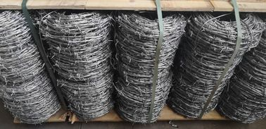 China Electro Galvanized Normal Twisted Barbed Wire Security 12# X14# For 20 KG/ROLL supplier