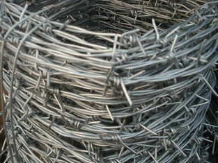 China 2.0mm * 2.5mm Galvanized Barbed Wire Hot Dip Galvanized Iron Wire Fence supplier