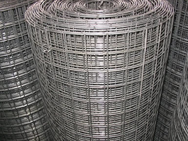 "China 1"" Galvanized Welded Wire Mesh Rolls Stainless Steel For Protection / Cage supplier"