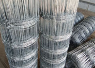 China Electro Galvanized Hinge Joint  Woven Field Fence For Grassland In 2.0mm Diameter factory