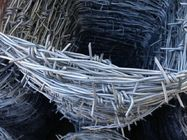 "China 12 *14 * 3 "" Cold Dipped Galvanized Point Barbed Wire / Pvc Coated Barbed Wire factory"