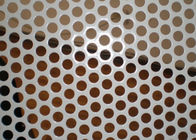 China 2MM Thickness Galvanized Perforated Metal Mesh for Decoration Door Screen factory