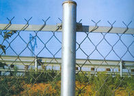 China Green PVC 5 CM X 5 CM Diamond Mesh Fence  for Outdoor Protection Fencing factory