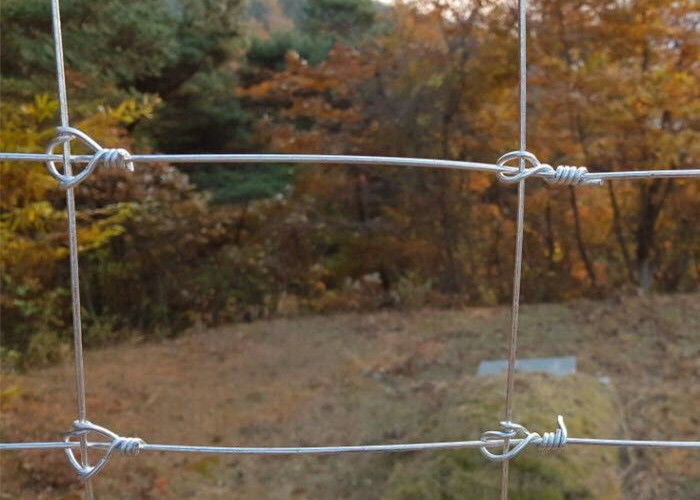 Hot Dipped Galvanized Steel Wire Deer Fence/ Grassland Cattle Fence