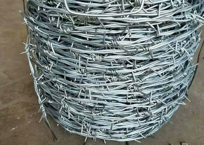 Electro Galvanized Barbed Wire with Sharp Points for Wire Fence Panels