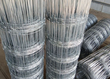 Electro Galvanized Hinge Joint  Woven Field Fence For Grassland In 2.0mm Diameter