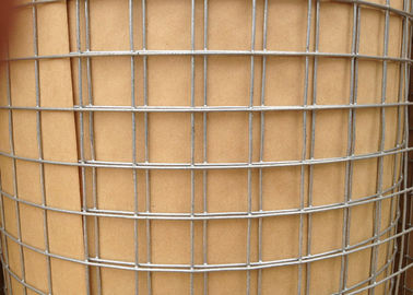 China 0 . 9m Galvanized Welded Wire Sheets , Rabbit Cage Square Welded Wire Fabric factory