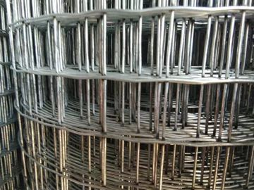 3/4'' Mesh 1.2m * 25m   Chicken Galvanised Welded Wire Mesh Fencing for Iraq Market