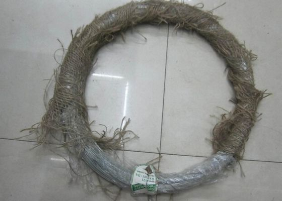 China 20 BWG-16 BWG Electric Galvanized Binding Wire Loop Coil Wire Free Sample factory