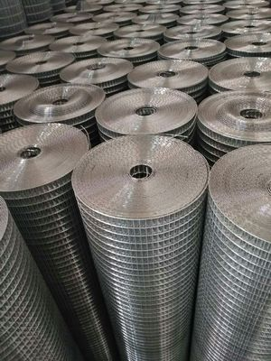 China 2.0 mm Low Carbon Iron Galvanized Welded Wire Mesh Metal Grid Fence For Roof Protection factory