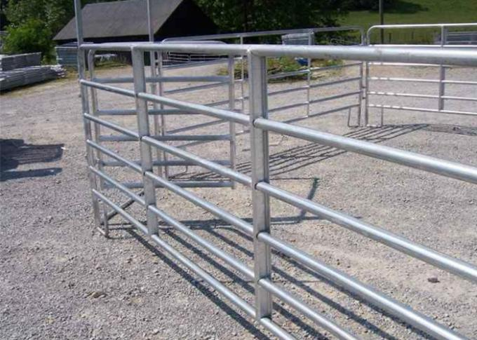 8Ft Welded Horse Mesh Fencing  Can Used Also As  Cattle Field FenceTo Prevent Wolf
