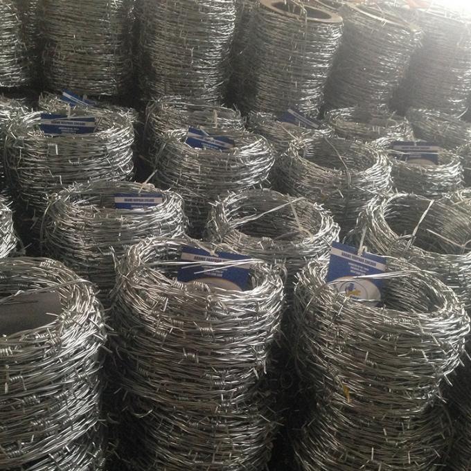 Electro Galvanized Normal Twisted Barbed Wire Security 12# X14# For 20 KG/ROLL