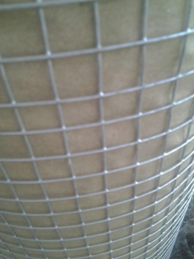 "1"" Galvanized Welded Wire Mesh Rolls Stainless Steel For Protection / Cage"